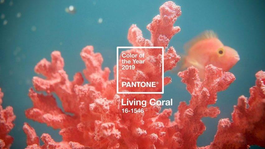 Living Coral, a cor de 2019.